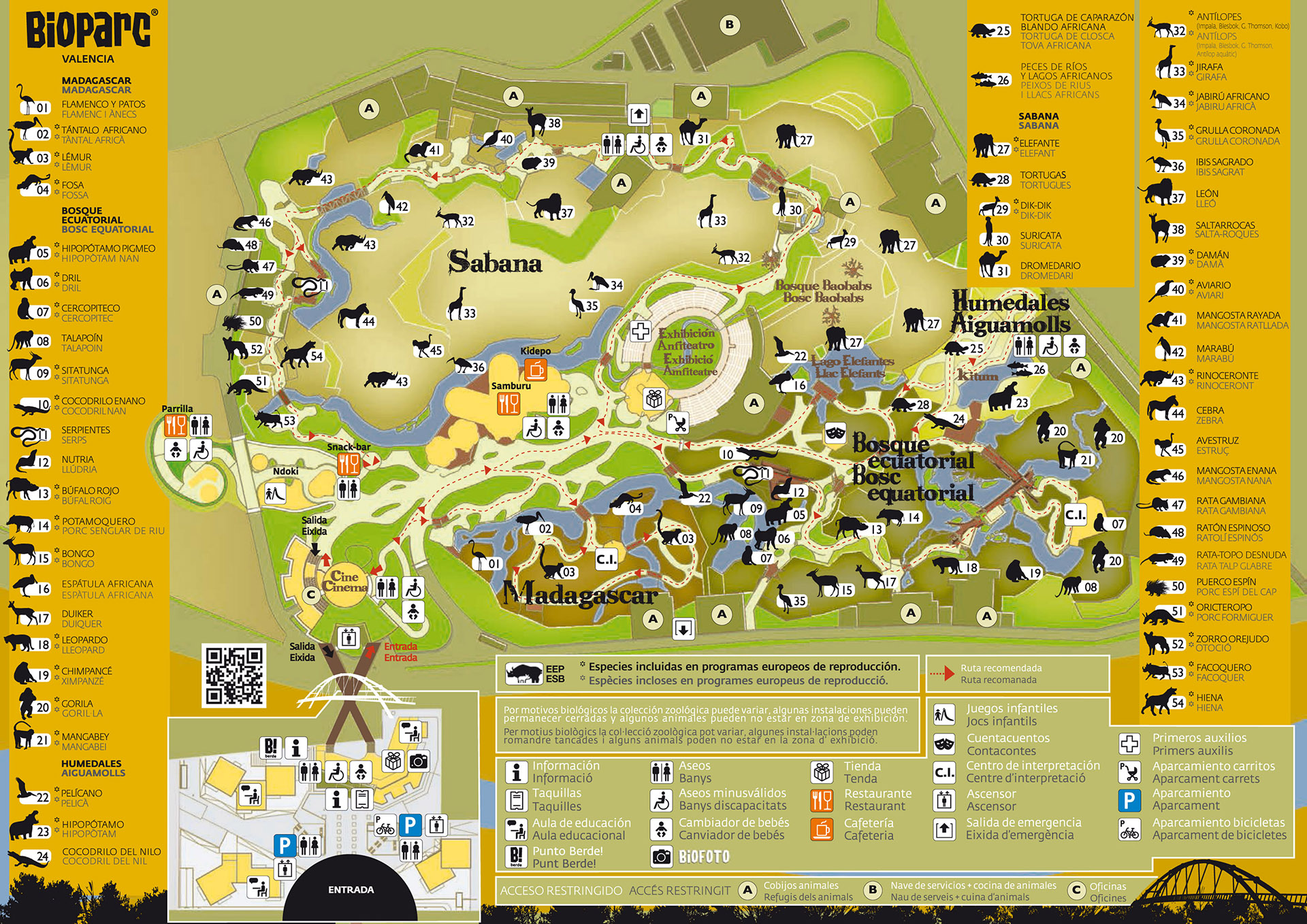 Zoologic natural park bioparc in valencia guide of valencia - Bioparc de valencia ...