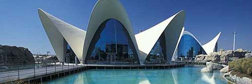 Visit the oceanographic in valencia guide of valencia for Oceanografico valencia
