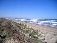 playa-de-la-devesa-en-valencia-01
