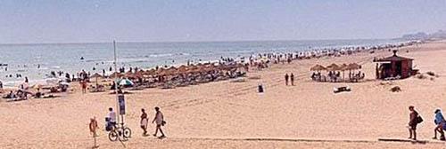 playa-roqueta-de-guardamar-del-segura-alicante